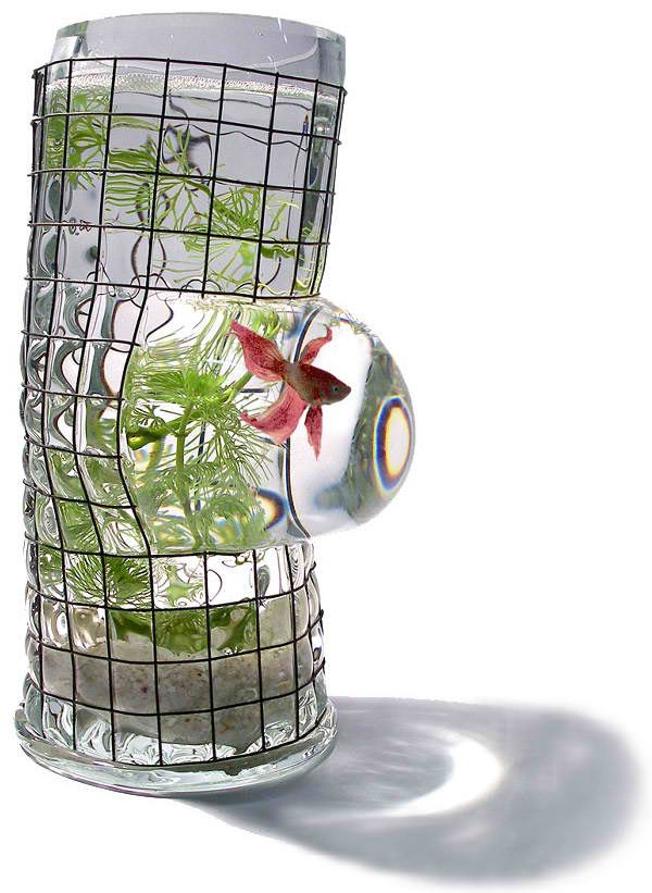 Betta Art Decorative Fish Bowl Weird Cute Aquariums  Aquariums Glass Aquarium And Glass