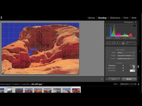 Using Lens Correction in Adobe Photoshop Lightroom 3 by Jason