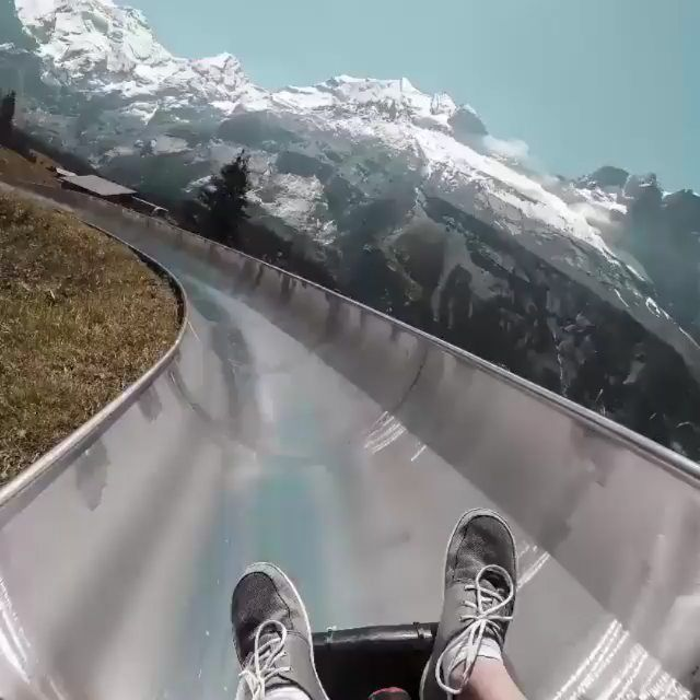 the alpine slide in kandersteg switzerland just got added to