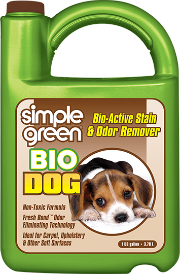 How To Remove Dog Urine Stains Odor Remover Pet Odor Remover Stain Remover Carpet