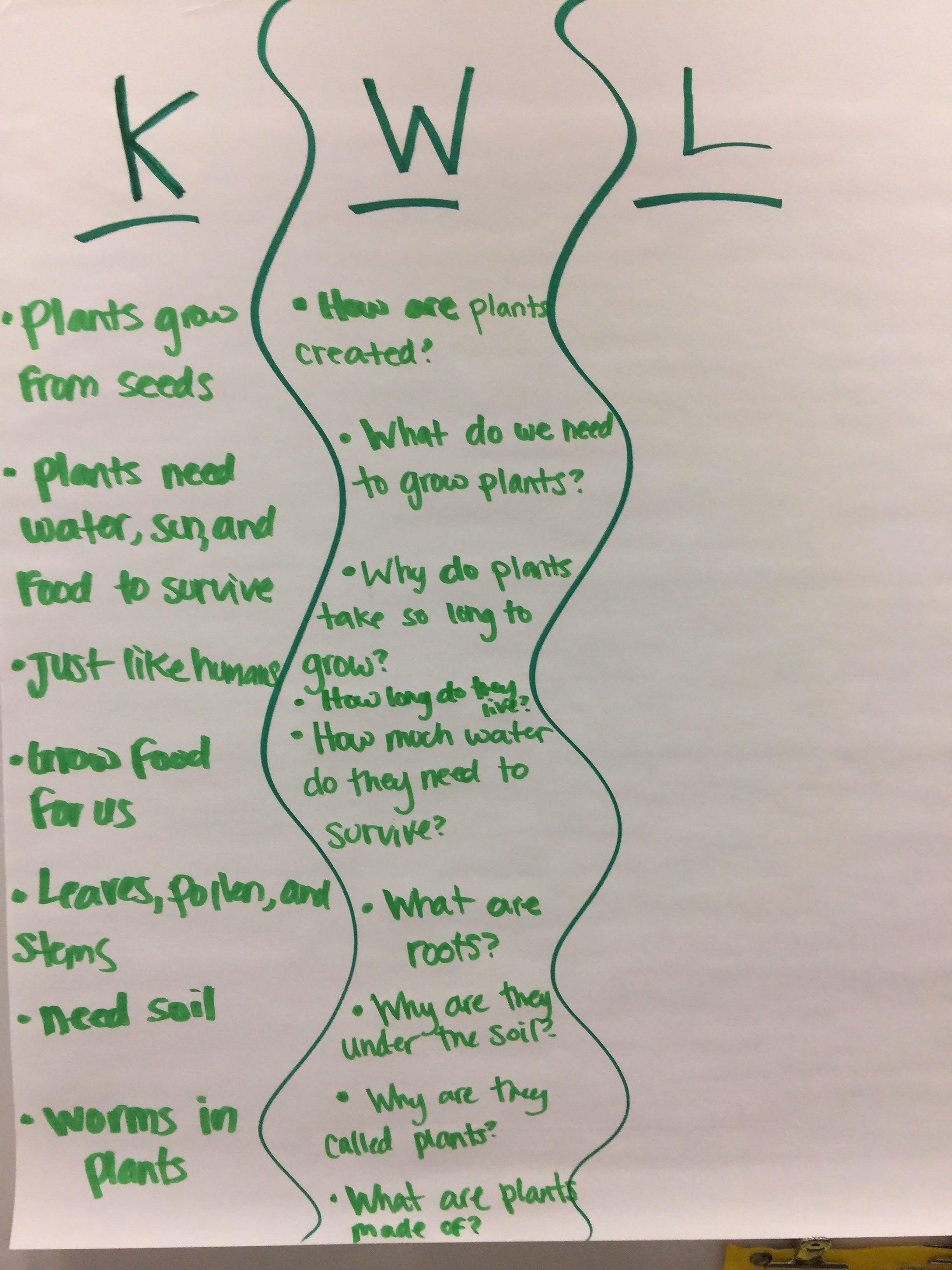 Plants KWL anchor chart  | My 2nd grade classroom | 2nd grade