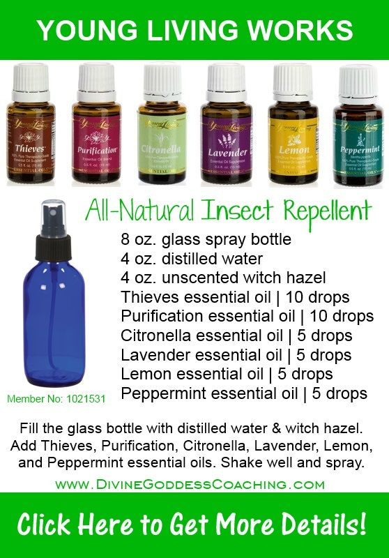 Best 25 Essential Oil Bug Spray Ideas On Pinterest