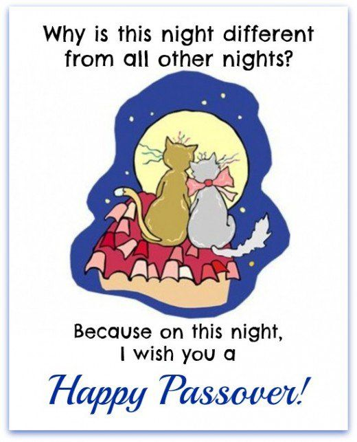 Happy passover find a cool passover greeting funny cards english happy passover find a cool passover greeting m4hsunfo
