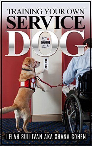 The Most Highly Trained Service Dogs Are Specially Breed