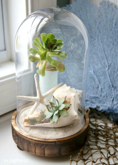 create a beachy succulent terrarium under a cloche featured on cc http