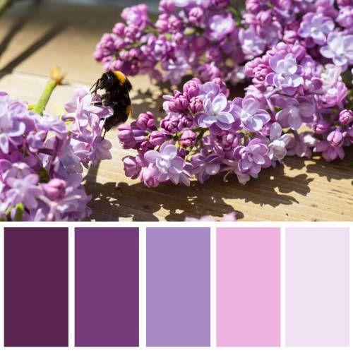 Farbkombinationen, Farben