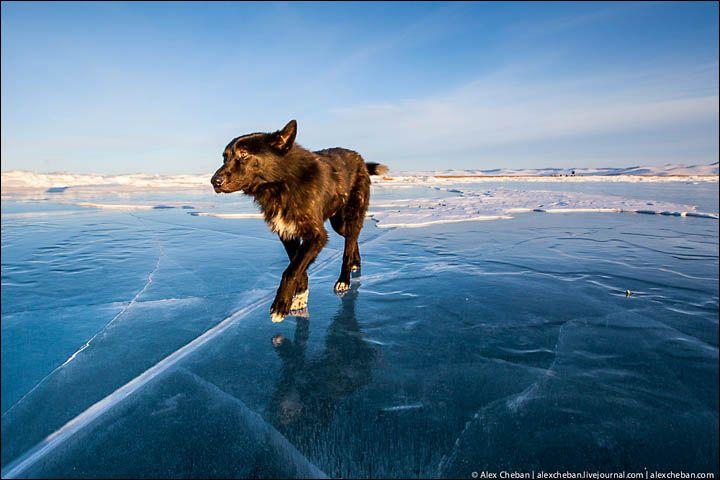 Baikal Ice Fairytale Siberia