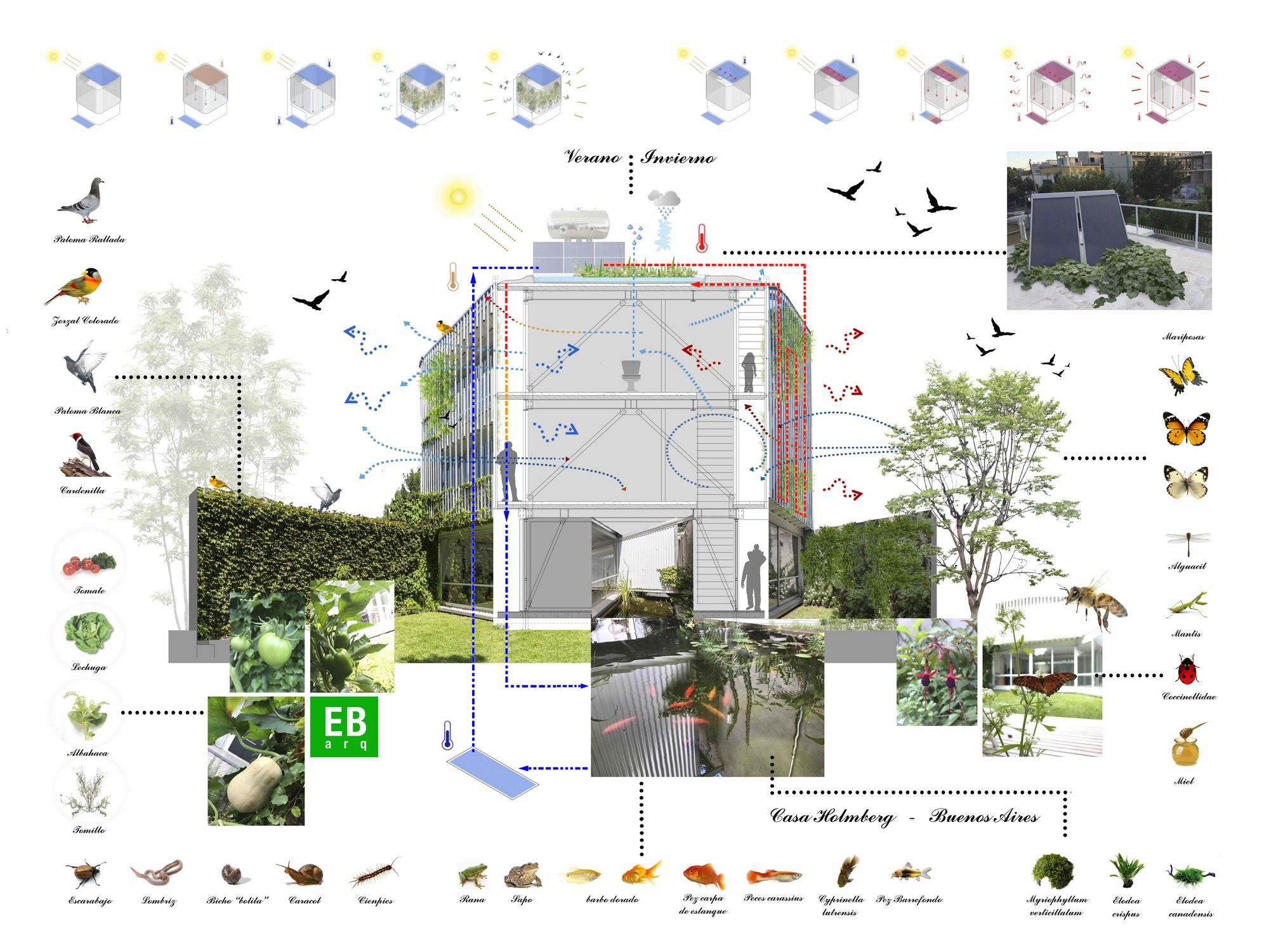 Imagen 46 de 47 de la galera de casa holmberg estudio borrachia diagram pooptronica