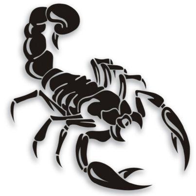 Escorpio Jpg 403 402 Tatuaje De Escorpion Tatuajes Escorpion Escorpion Dibujo