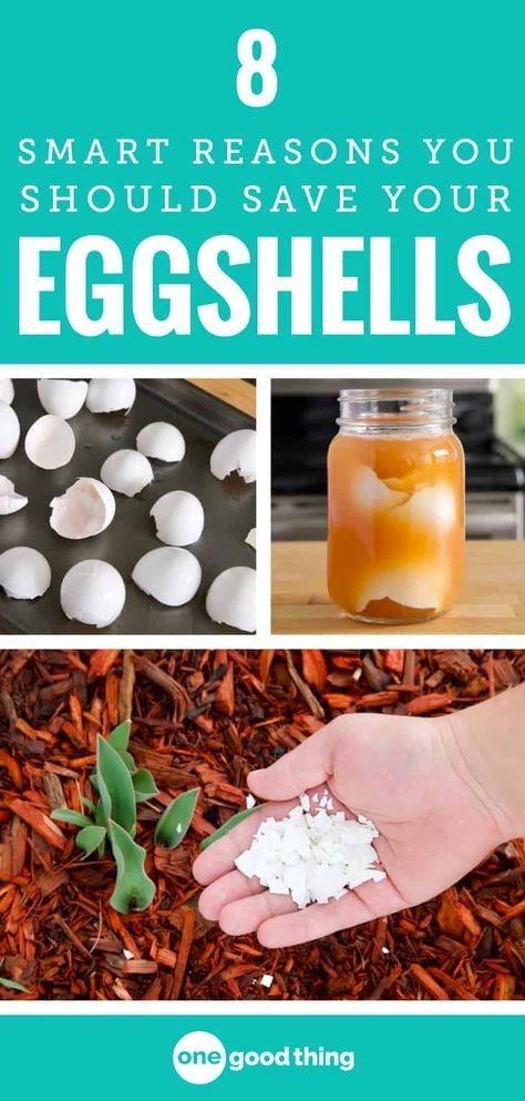 1 Make Four Piles The Great Closet Clean Out Is Your: 8 Smart Reasons You Should Be Keeping Your Eggshells