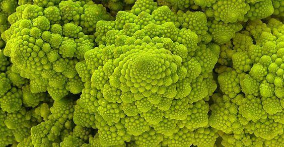 Risultati immagini per broccolo romanesco