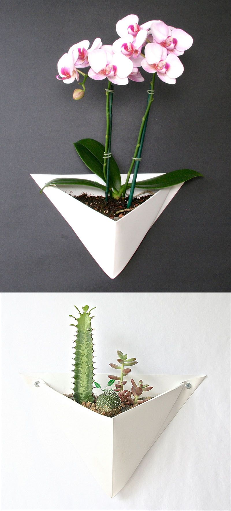 10 Modern Wall Mounted Plant Holders To Decorate Bare Walls. Succulent Wall  GardensIndoor ...