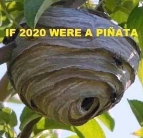 If 2020 Were A Pinata Really Funny Haha Funny Humor