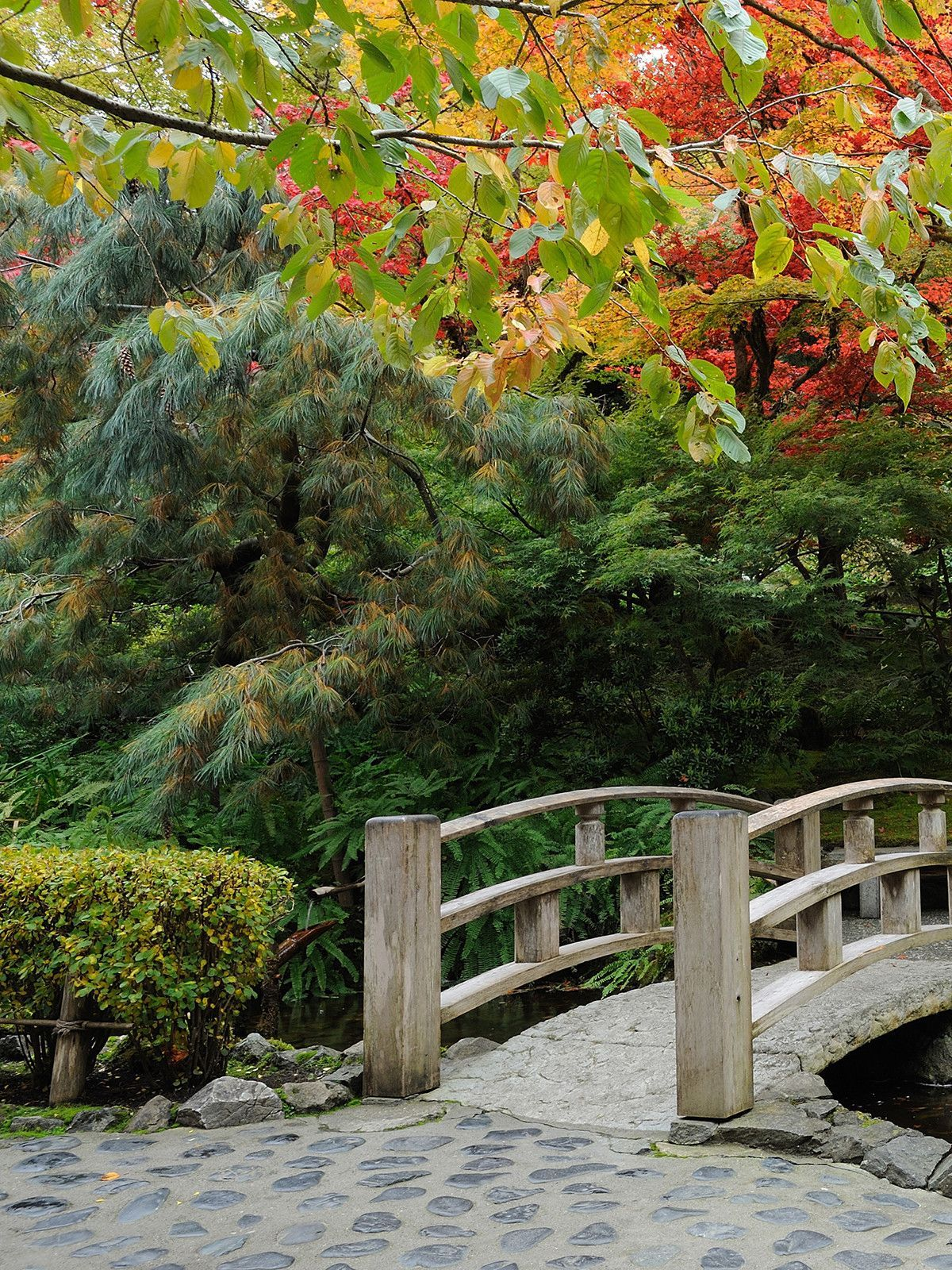 Buschart gardens near Victoria BC Botanical gardens near