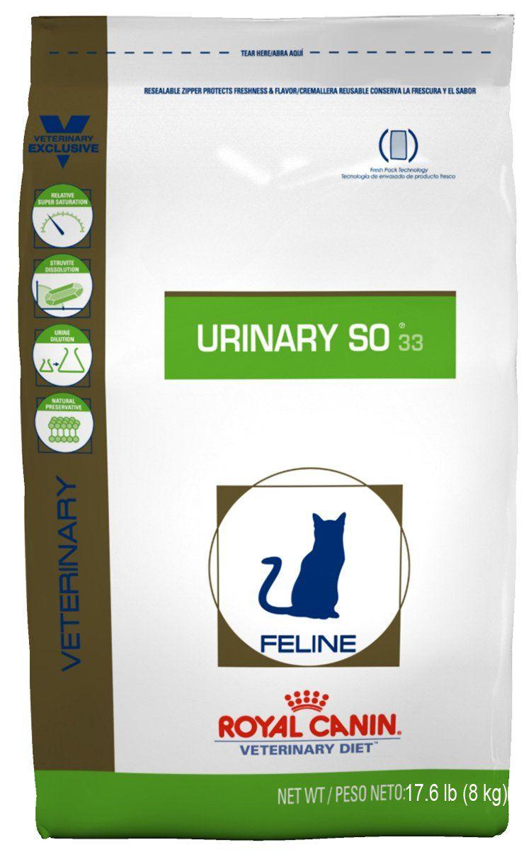 Robot Check Dry Cat Food Best Cat Food Cat Food