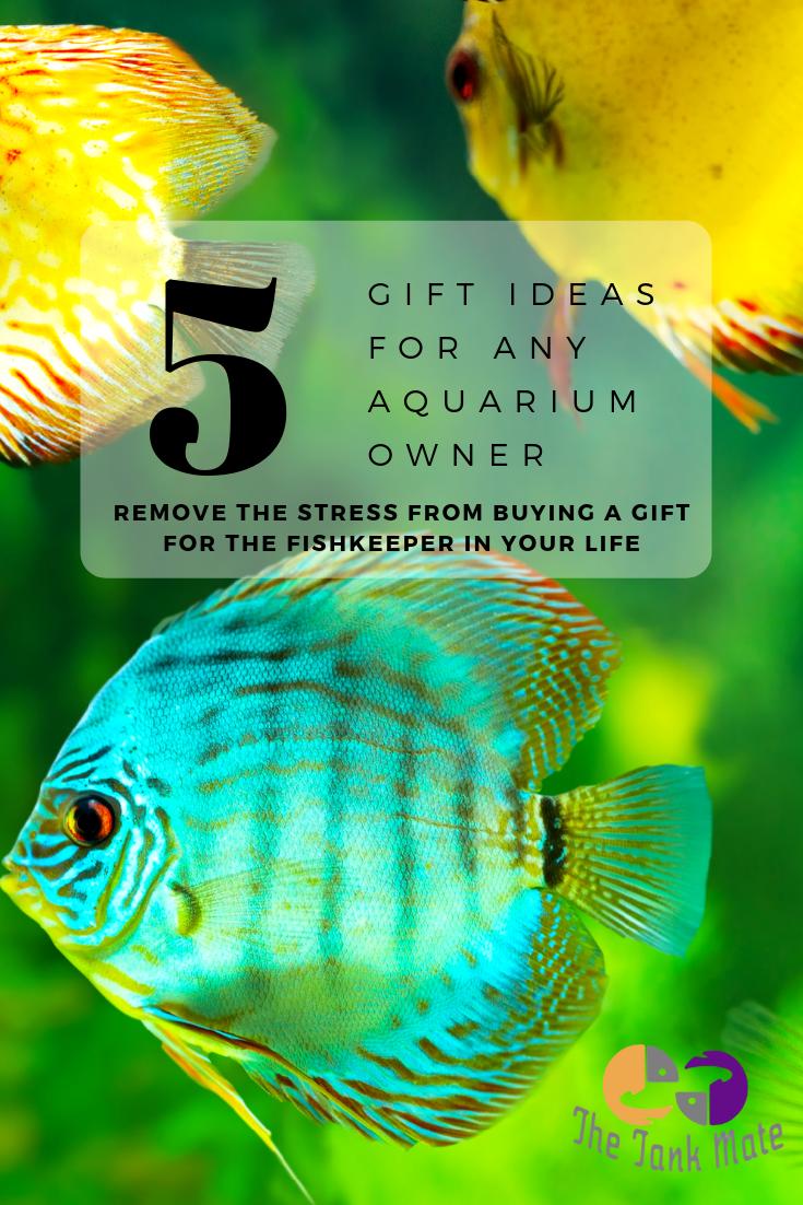 Aquarium Supplies Gift