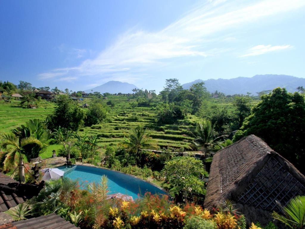 Penginapan Mewah Dan Murah Idr 400 Ribuan Malam Bali Villa Foto Wisata
