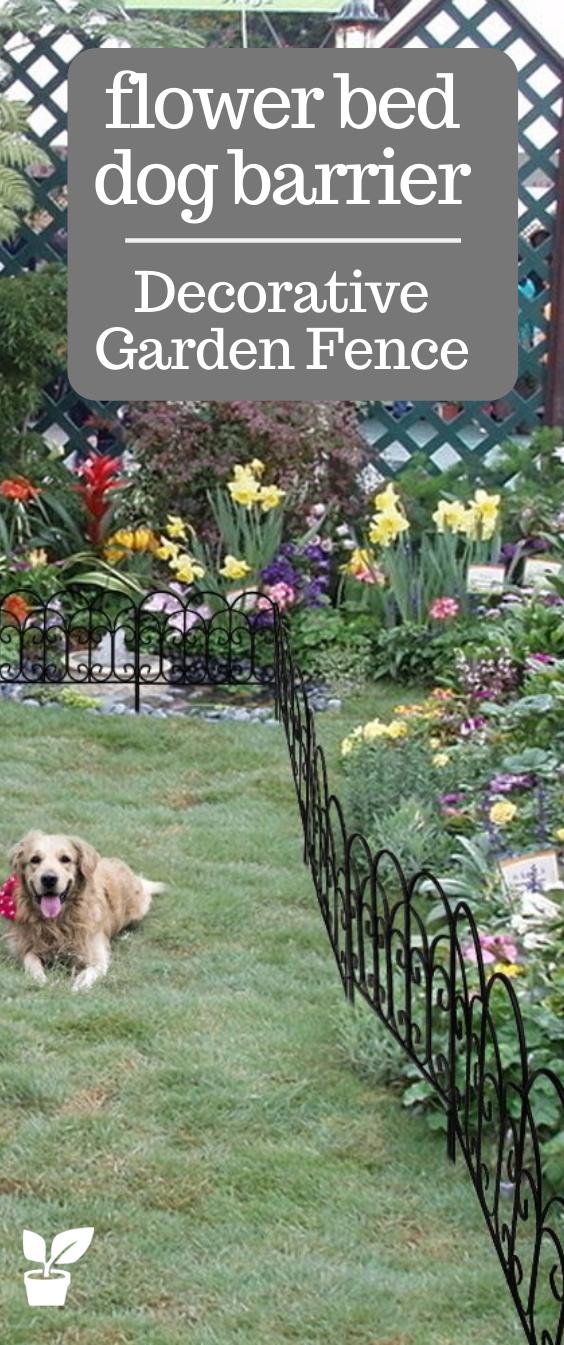 735d10a1d0c57072b727570e78e557ef - Are Dogs Allowed At The Botanical Gardens
