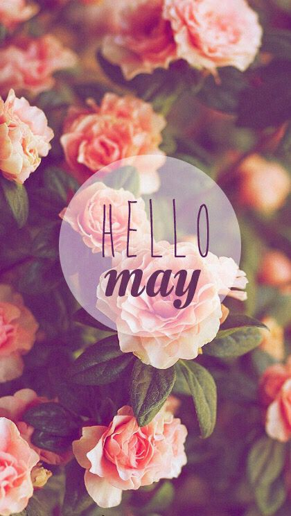 Wallpaper Iphone Hello May With Images Hello May Iphone