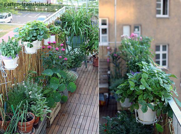 Balkon Oase Home Ideen