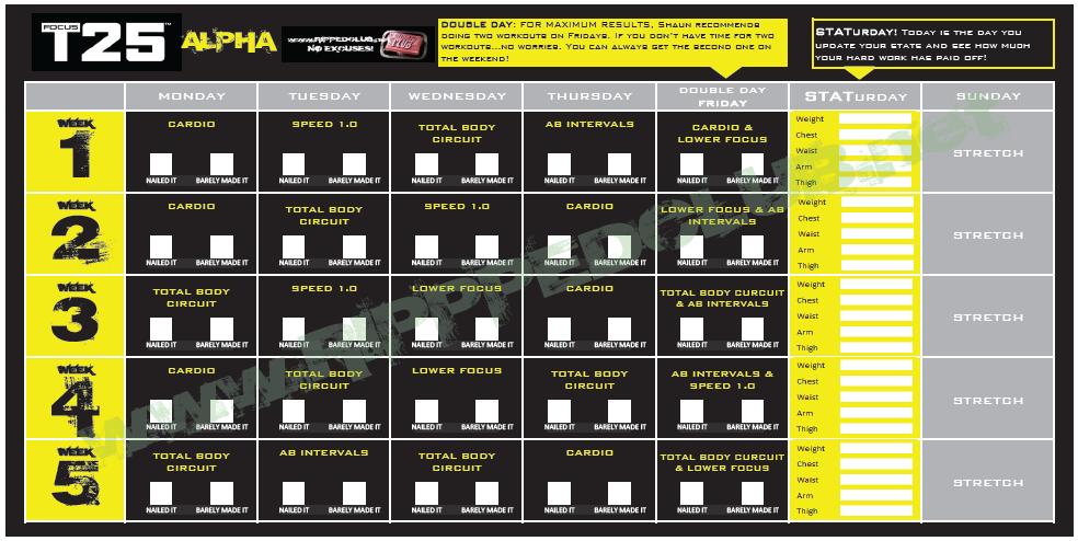T25 5 day fast track pdf free