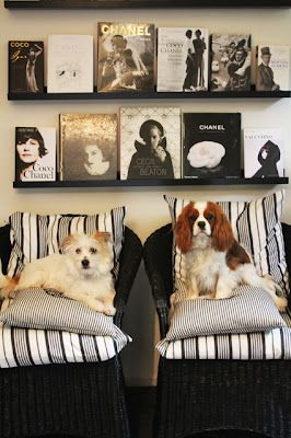 cushions, simple shelves, book display