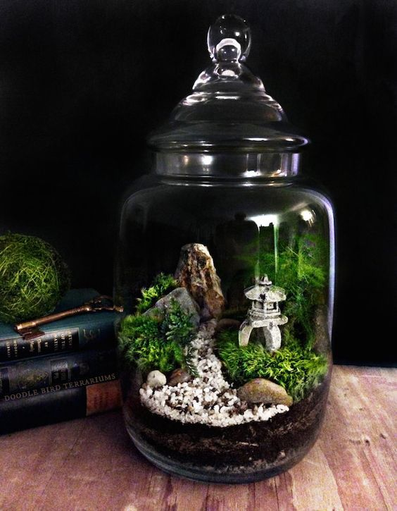 Do it yourself jar garden and light projects terrario terraza do it yourself jar garden and light projects do it yourself samples solutioingenieria Image collections