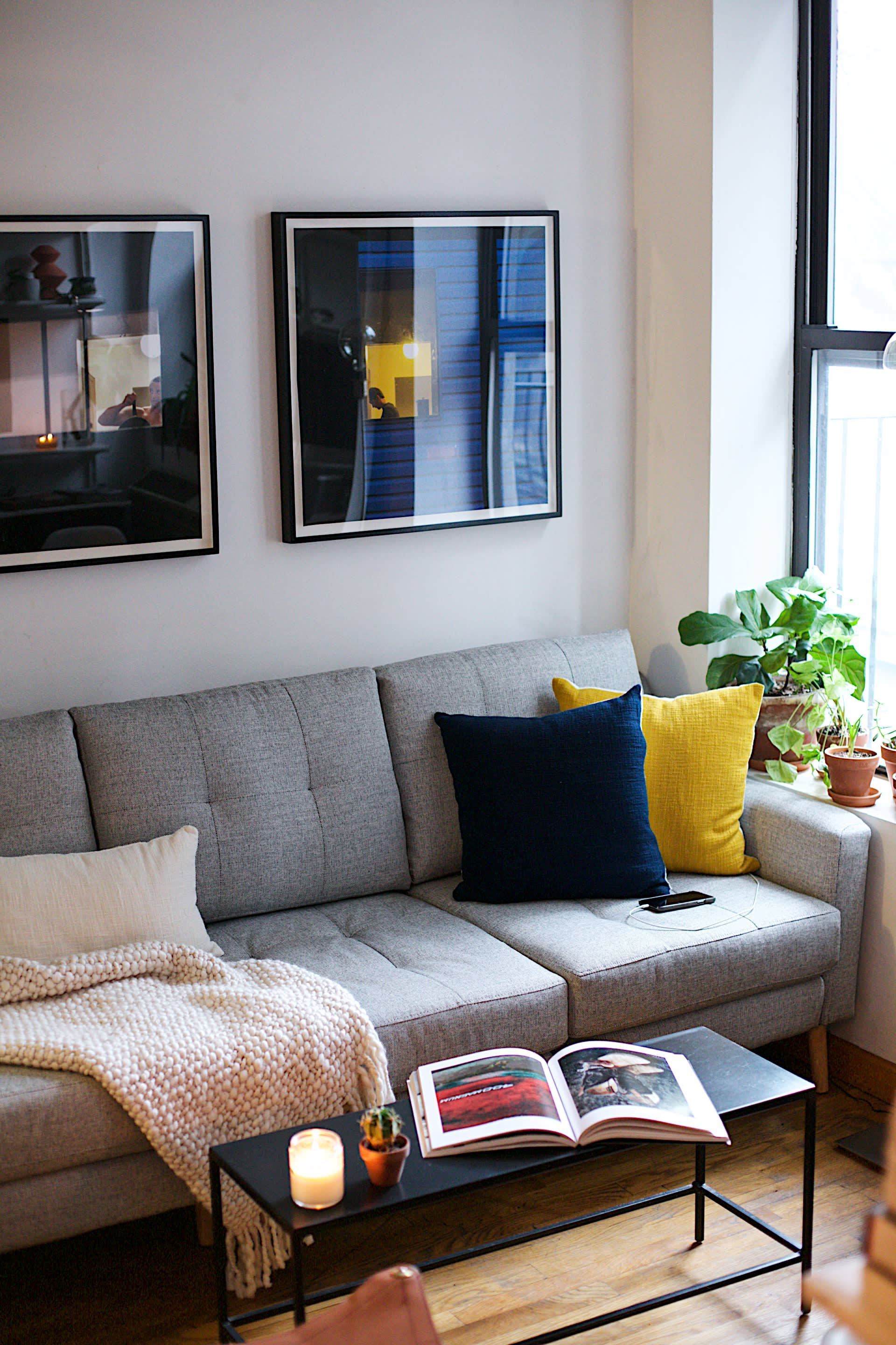 Roommates Make A Small Apartment As Efficient Possible Therapy