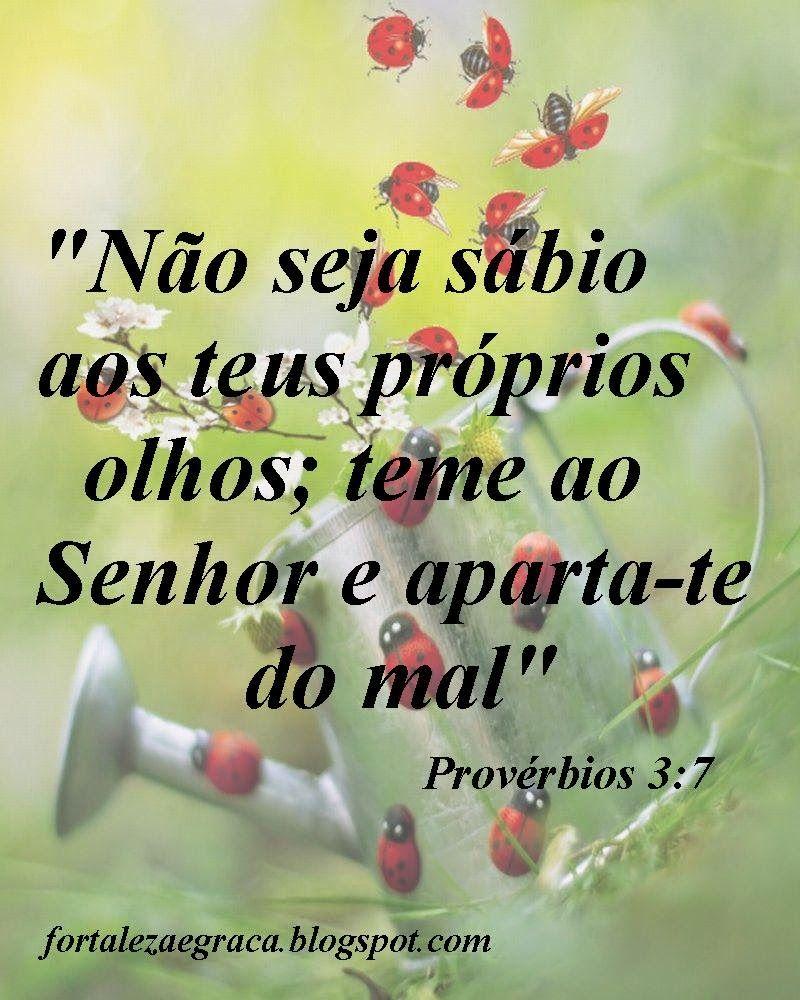 Proverbios 2 20 Em 2020 Mensagens Sobre Deus Frases