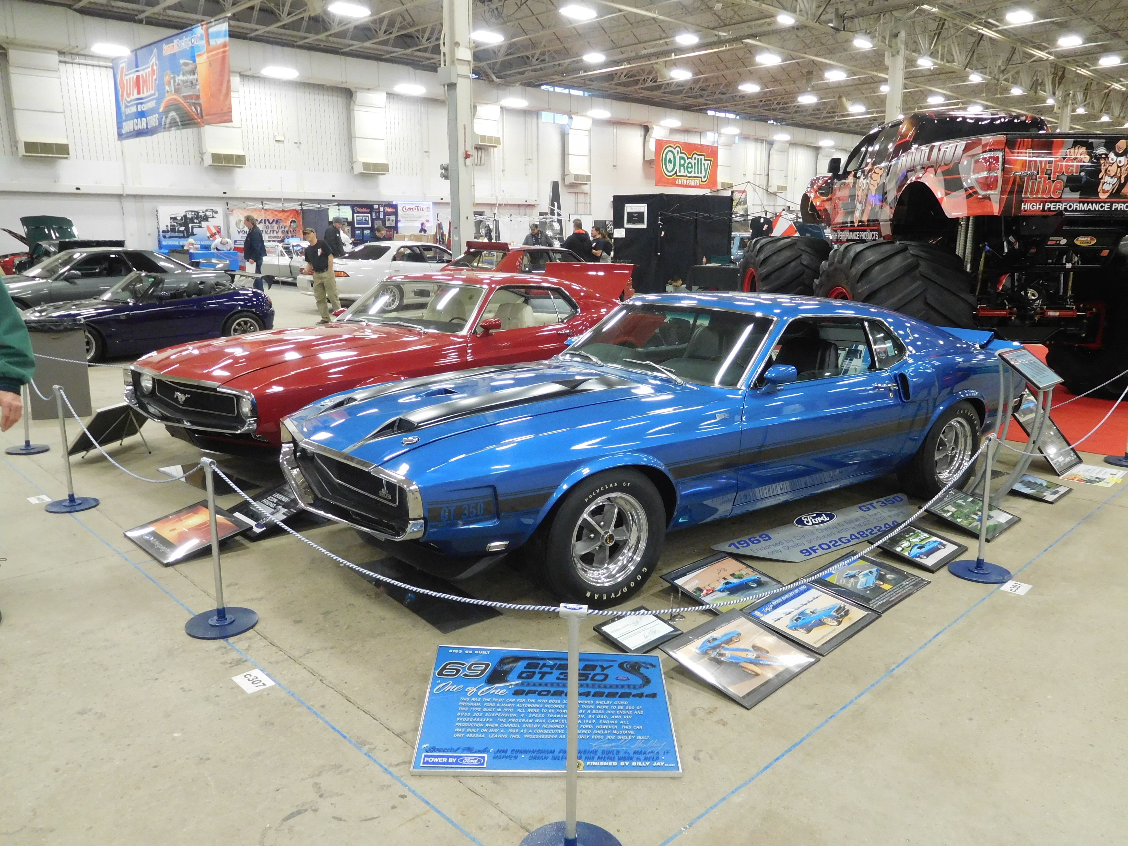 1969 Shelby Boss 302 Gt 350 And The 1970 Quarter Horse Mustang