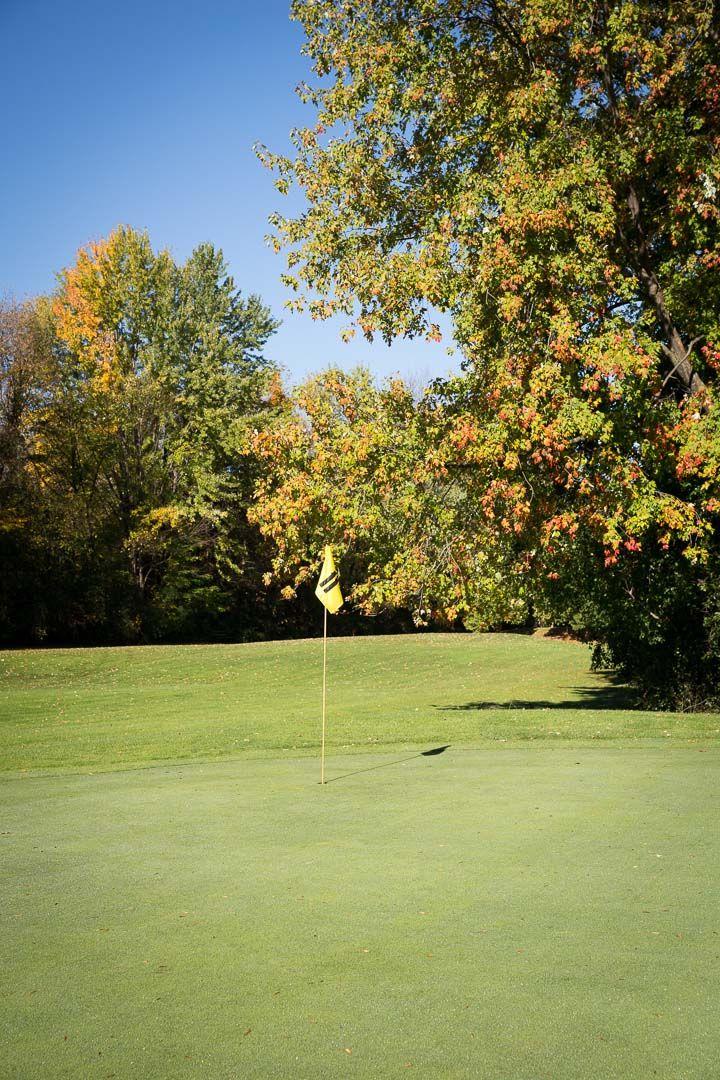 Par 3 Course At Club De Golf Le Cardinal 1000 Av Des Bois Ste
