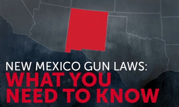 what are the gun laws in new mexico