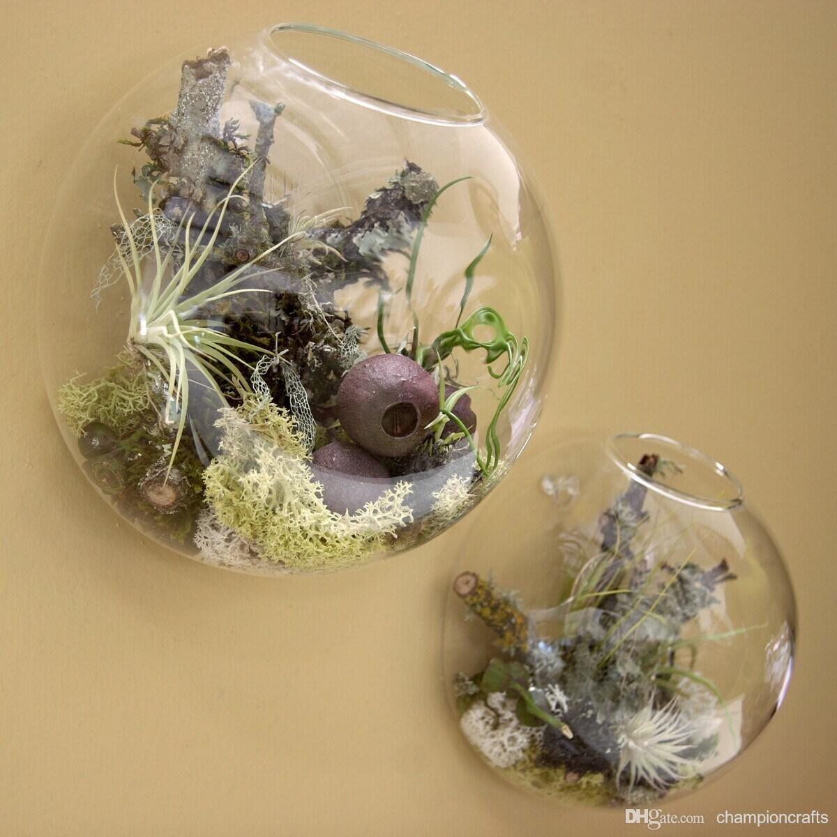 Online Cheap Wall Bubble Glass Terrarium Succulent Planter Terrarium