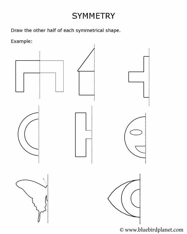 Free printable worksheets for preschool Kindergarten 1st 2nd – Symmetry Worksheets Kindergarten