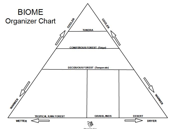 Biomes Education Life Organization Chart
