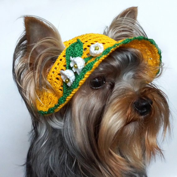 2a7ada8190e51 Sombrero para perros Lily