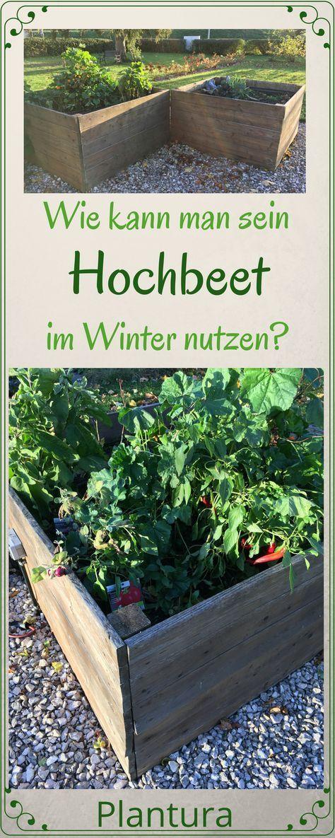 Wie kann man sein Hochbeet auch im Winter nutzen