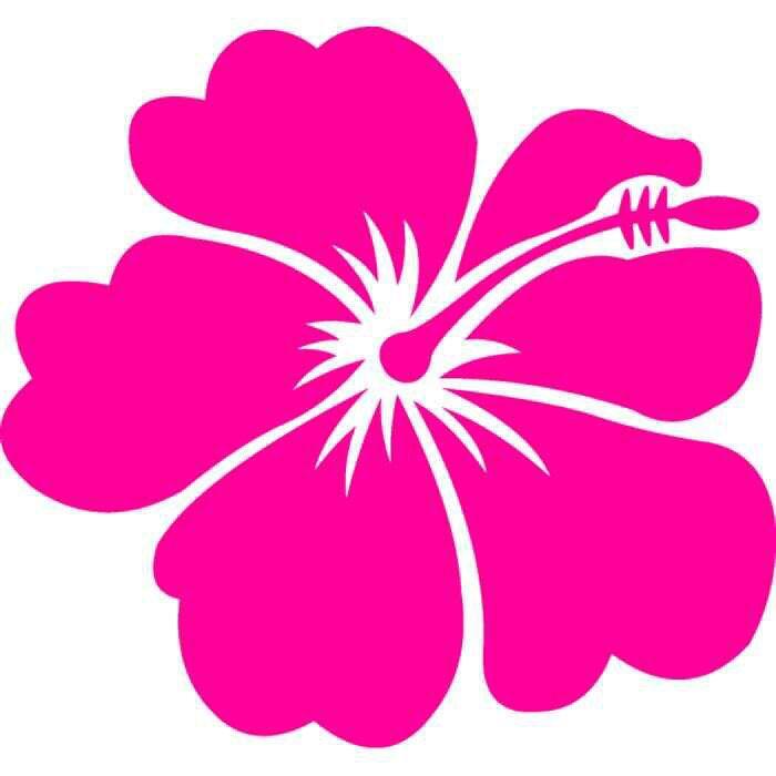 Flower Flower Clipart Flower Art Clip Art