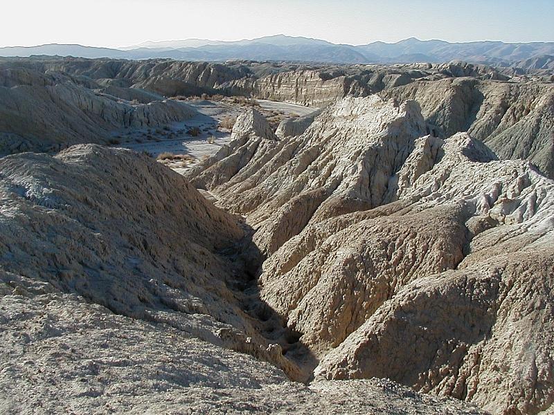Desert Arroyo | Desert Arroyo