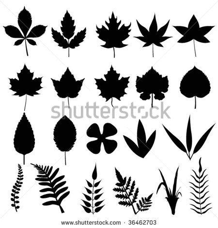 Leaf Silhouette Google Search Leaf Silhouette Flower Drawing Leaf Template