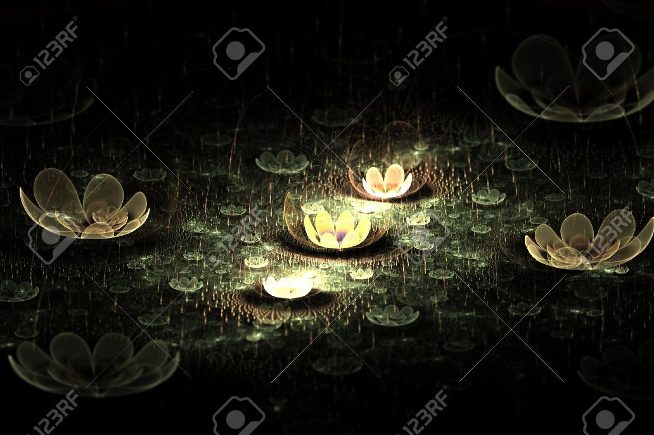Black Lotus Flower Wallpapers Picture Natures Wallpapers