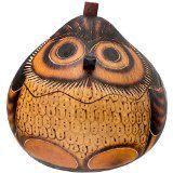 A gourde made into an Owl Box!