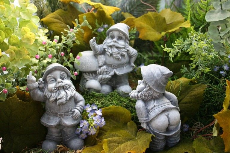 Gnome Garden: Pin On Middle Finger