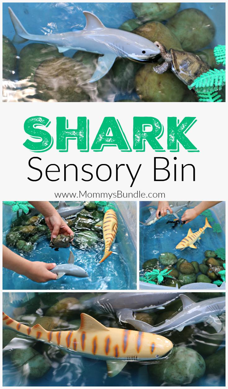 Shark Sensory Bin An Easy Shark Week Activity Mommy S Bundle Shark Activities Sensory Bins Ocean Activities [ 1250 x 735 Pixel ]