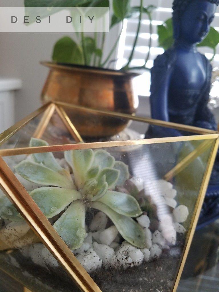 Succulent terrarium, brass home decor, buddha decor, DIY home decor, brass terrarium,ethnic home decor, indian home decor