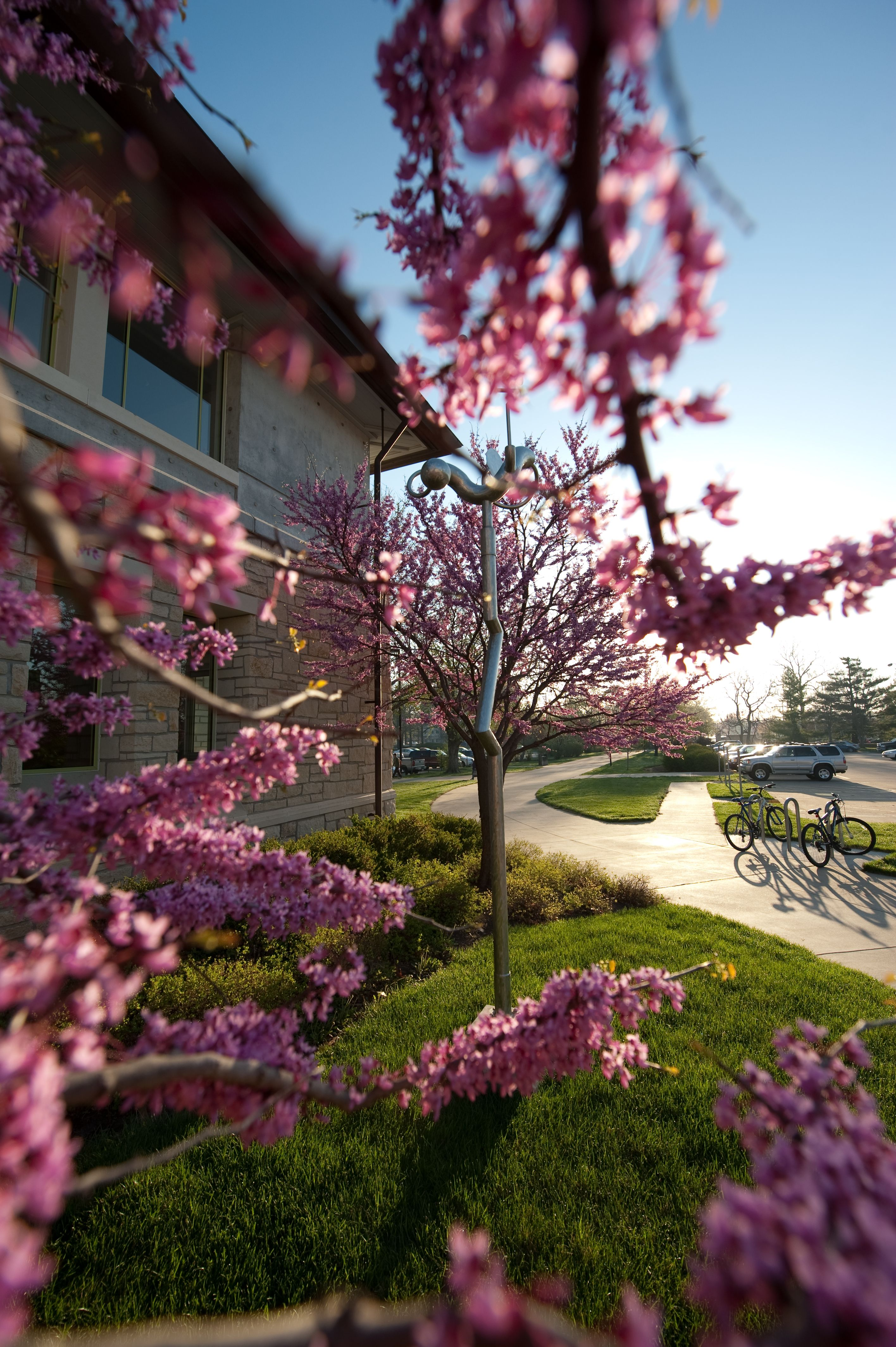 A sunshine spring day on K-State's campus. Copyright K ...