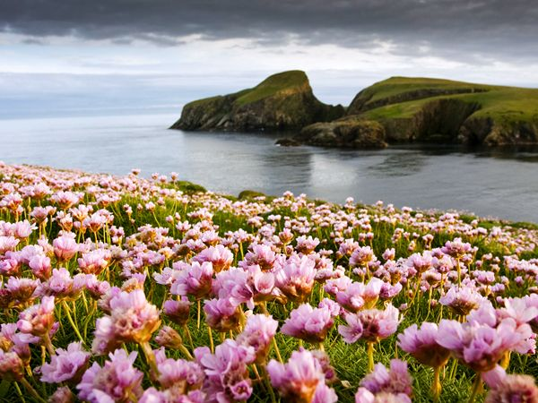 Top 10 Islands | Fair isles, Scotland and National geographic
