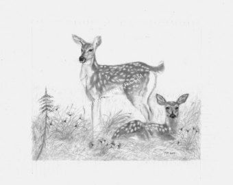 deer sketch sketching sketch sketchbook drawings sketches