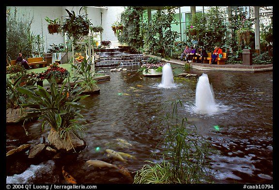 A Week Here Would Be Nice Indoor Pond And Garden Calgary Alberta