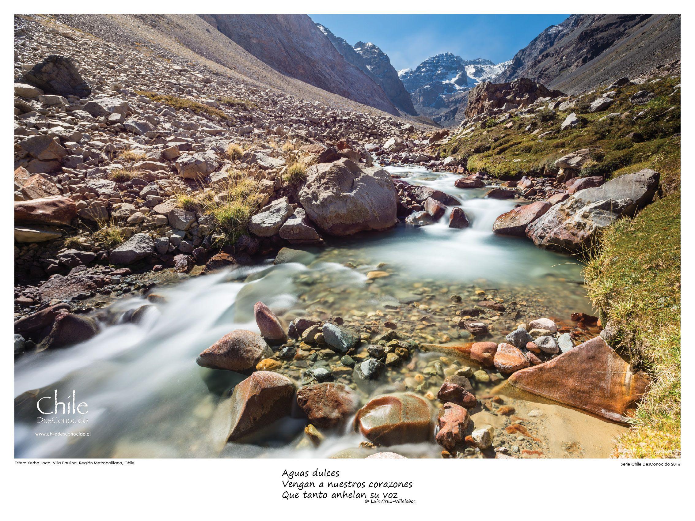 Estero Yerba Loca, Reserva Natural Villa Paulina. Fine Art Print, 19/20 copies available.
